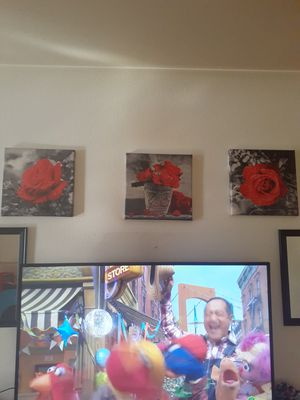 Floral Canvases for Sale in Eau Claire, WI