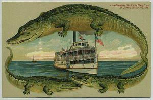 Antique Alligator Border Postcard 1908 St John's River Steamer Fred'k de Bary S543 **100.00 OBO** for Sale in Orlando, FL