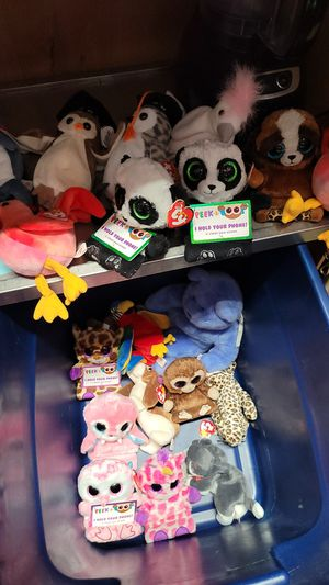 19 TY beanie baby all for $10 for Sale in Kent, WA
