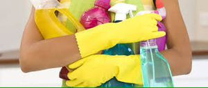 Cleaning supplies for Sale in Winter Park, FL