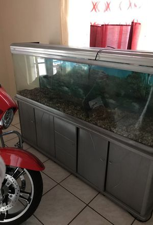 Large fish tank with filters and pump 7 feet large and well kept for Sale in Miami, FL