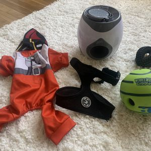 Dog Toys + Collar + Outfit - Pick Up Venice for Sale in Los Angeles, CA