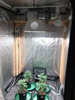 Indoor gardening equipment controlled climate 5x5 room tent for Sale in Hillsboro, OR