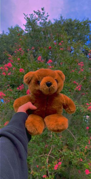 Little teddy bear plushie for Sale in Kissimmee, FL