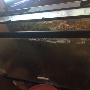 Fish Tank 35 Gal for Sale in Renton, WA