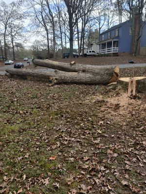 Free wood!!! for Sale in North Chesterfield, VA