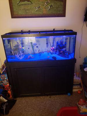 75 gallon aquarium for Sale in Pompano Beach, FL