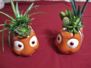 Succulents en macetitas de cerámica pequeños $6EACH for Sale in Bell, CA