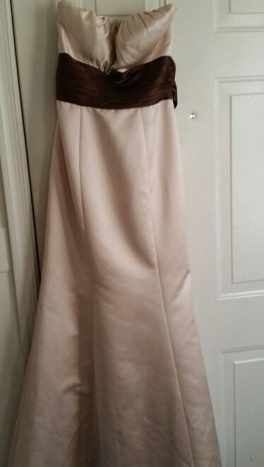 Champagne Dress w/chocolate sash