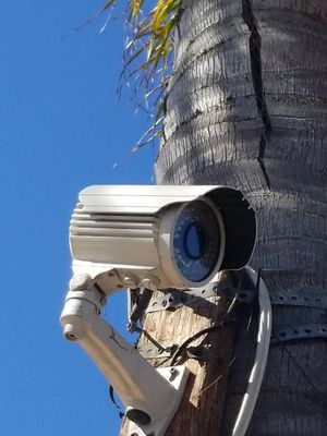Security cameras HD 1080 plus tons of cable 50.00 ea for Sale in CA, US