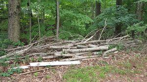 Free fire wood for Sale in Meriden, CT