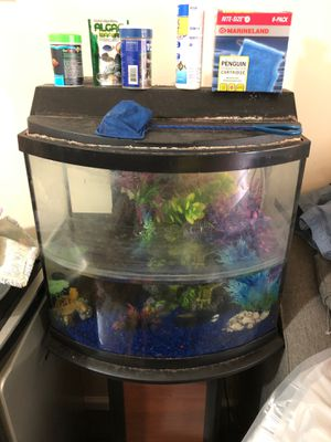 Fish Tank for Sale in Landover, MD