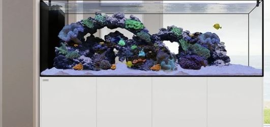 210 Gal Fish Tank & Supplies for Sale in Chicago,  IL