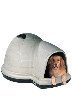 Indigo Dog House, X-Large for Sale in Yonkers, NY