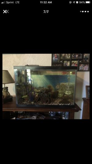 25 gallon fish tank with everything for Sale in Modesto, CA