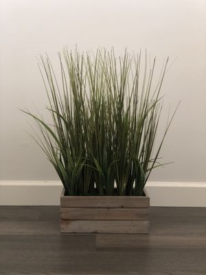 Farmhouse large potted grass for Sale in Long Beach, CA