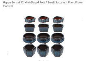 Happy Bonsai 12 Mini Glazed Pots / Small Succulent Plant Flower Planters for Sale in Huntington Park, CA