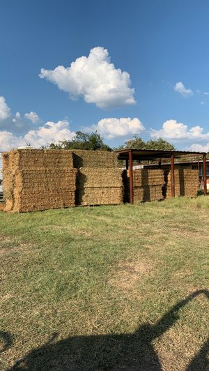 Second cutting upland alfalfa for Sale in Fort Worth, TX
