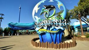 7 SeaWorld SD tickets for Sale in Lakeside, CA