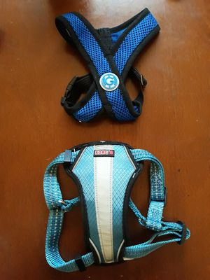 Harness for Sale in Port Arthur, TX