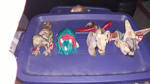 Ty Beanie Babies dinosaurs ,dragon for Sale in Columbus, OH
