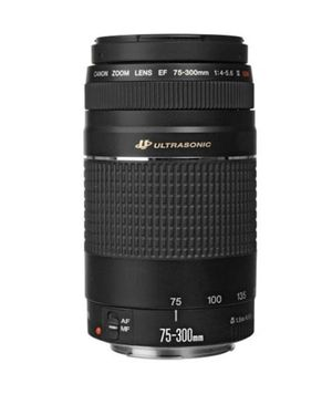 70-300mm Canon Lens for Sale in Hialeah, FL