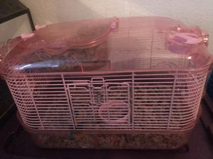 Teddy bear Hamsters with cages for Sale in Pacheco, CA