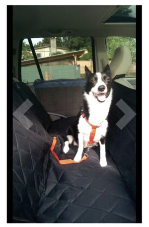 Red Dog Harness and Seatbelt Clip for Sale in Pittsburgh, PA