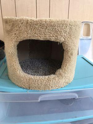 Kitten house for Sale in Richford, NY