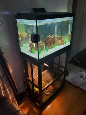 Fish tank and stand(no fish,no bottom tank) for Sale in Burke, VA