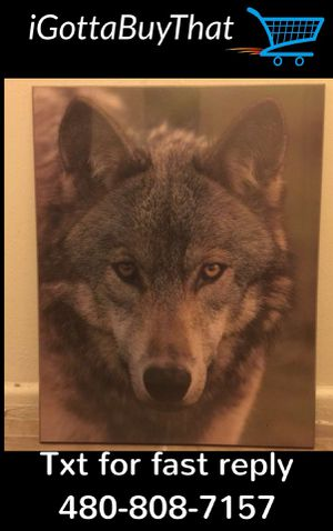 Wolf picture on hard frame 16x20 NEW for Sale in Tempe, AZ