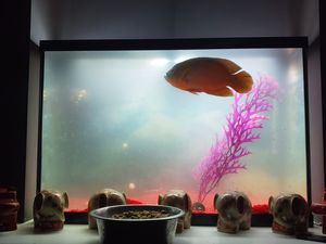 60 gallon fish aquarium with canister filter hood lights and 2 cabinetsstand for Sale in Wake Forest, NC