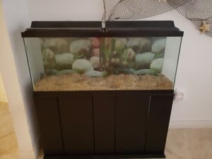 55 gallon aquarium with stand, double overhead lights, filters, etc. for Sale in Clearwater, FL