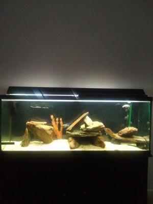 55 gallon aquarium w stand and accessories for Sale in Sacramento, CA