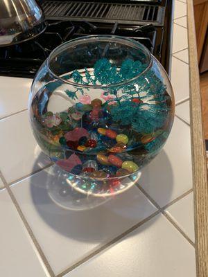 1 gallon fishbowl for Sale in Sammamish, WA