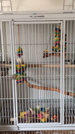 Bird Cage (firm On Price) for Sale in Simi Valley,  CA