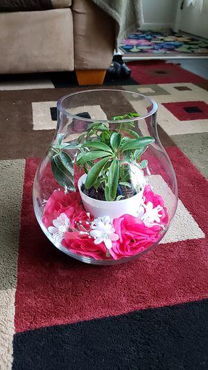 Flower pot (with plant) for Sale in Woodbridge, VA