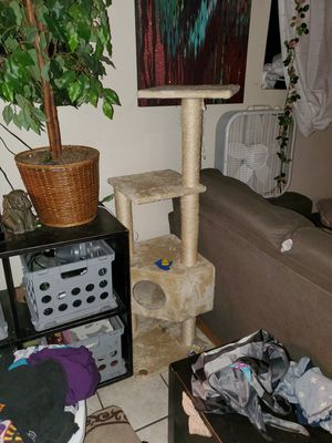 Cat tree for Sale in Snohomish, WA