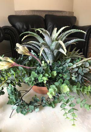 Fake plant for Sale in La Palma, CA