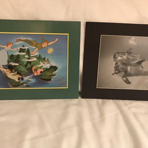 Pictures Of Dolphin & Peter Pan for Sale in Hudson, FL