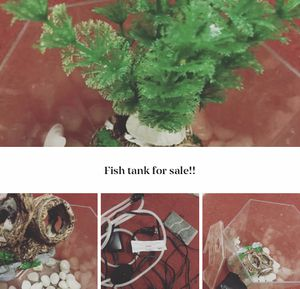 Fish Tank W/ Filter for Sale in Hopewell, VA