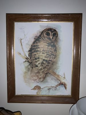Vintage barn owl art by m.otto - 1979 for Sale in Cary, NC