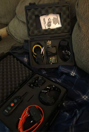 Command dog collars with remotes. for Sale in Clarksville, TN