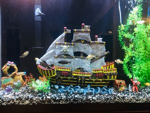 45 Gallon fish tank. Aquarium for Sale in Gainesville, VA