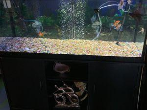 Fish Tank (75 gallons) for Sale in Miami, FL