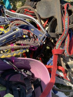 Horse Tack Lot for Sale in Bakersfield,  CA