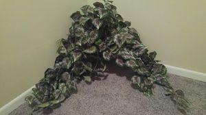 Fake plant for Sale in Lorain, OH