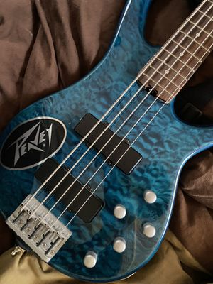 Peavey Fury V 5-String Bass Guitar for Sale in Alexandria, VA