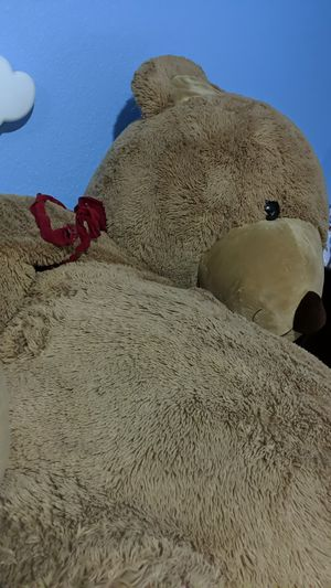Very big teddy bear needs a new home. Great for Valentine's day! for Sale in Oakland, CA