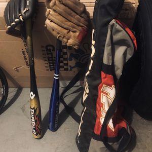 2 Baseball Bats, 2 Baseball Gloves And A Bag for Sale in Laurel, MD